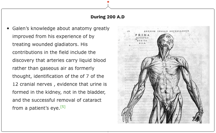 The Artistic Study Of Anatomy And Dragons Ms Pollocks Weebly